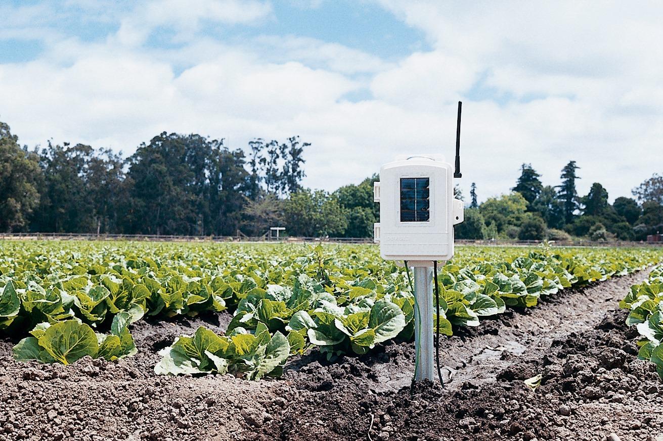 Davis Instruments 6345 Wireless Leaf Amp Soil Moisture